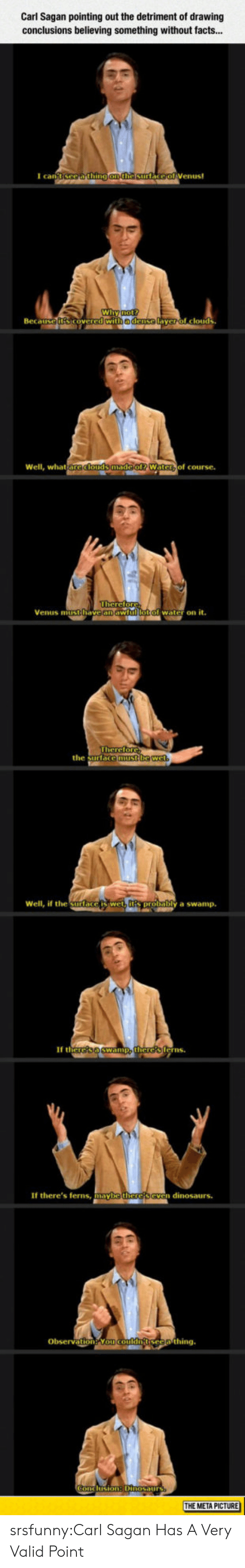 Facts, Tumblr, and Yo: Carl Sagan pointing out the detriment of drawing  conclusions believing something without facts...  I can  Wi  Beca  edense  yerol clouds  Well, what  of course.  Venus mitithave an aw  water on it.  the surtace  Well, if the Surlace  y a swamp.  If th  erns  If there's ferns,  maybe  n dinosaurs.  Obsevation Yo  THE META PICTURE srsfunny:Carl Sagan Has A Very Valid Point