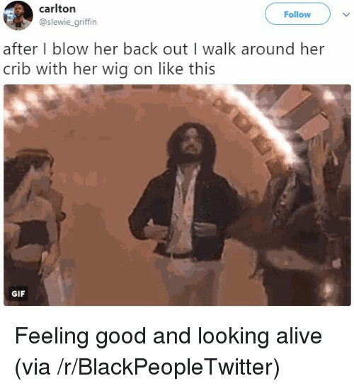 Alive, Blackpeopletwitter, and Gif: carlton  @slewie_griffin  Follow  after I blow her back out I walk around her  crib with her wig on like this  GIF <p>Feeling good and looking alive (via /r/BlackPeopleTwitter)</p>