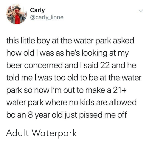 Beer, Kids, and Water: Carly  @carly_linne  this little boy at the water park asked  how old I was as he's looking at my  beer concerned and I said 22 and he  told me I was too old to be at the water  park so now I'm out to make a 21+  water park where no kids are allowed  bc an 8 year old just pissed me off Adult Waterpark