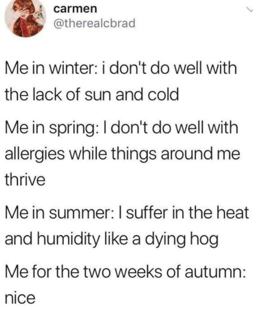 Winter, Summer, and Heat: carmen  @therealcbrad  Me in winter: i don't do well with  the lack of sun and cold  Me in spring: I don't do well with  allergies while things around me  thrive  Me in summer: I suffer in the heat  and humidity like a dying hog  Me for the two weeks of autumn  nice