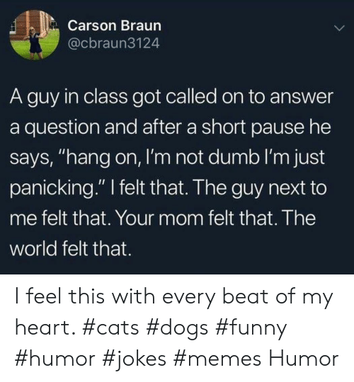"Cats, Dogs, and Dumb: Carson Braun  @cbraun3124  A guy in class got called on to answer  a question and after a short pause he  says, ""hang on, I'm not dumb I'm just  panicking."" felt that. The guy next to  me felt that. Your mom felt that. The  world felt that. I feel this with every beat of my heart. #cats #dogs #funny #humor #jokes #memes Humor"