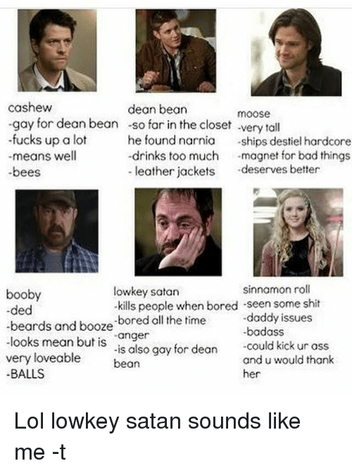 """Boobis: cashew  dean bean  moose  -gay for dean bean -so far in the closet very tall  -fucks up a lot  he found narnia  ships destiel hardcore  drinks too much  magnet for bad things.  means well  leather jackets  deserves better  -bees  sinnamon roll  lowkey satan  booby  -kills people when bored -seen some shit  -ded  -daddy issues  beards and booze  -bored all the  time  looks mean but is  """"anger  could kick ur ass  very is also gay for dean  and u would thank  loveable  bean  BALLS  her Lol lowkey satan sounds like me -t"""
