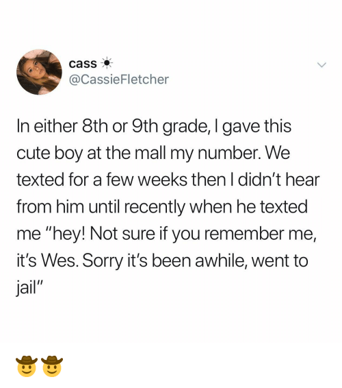 "Cute, Jail, and Memes: cass  @CassieFletcher  In either 8th or 9th grade, I gave this  cute boy at the mall my number. We  texted for a few weeks then I didn't hear  from him until recently when he texted  me ""hey! Not sure if you remember me,  it's Wes. Sorry it's been awhile, went to  Jail"" 🤠🤠"