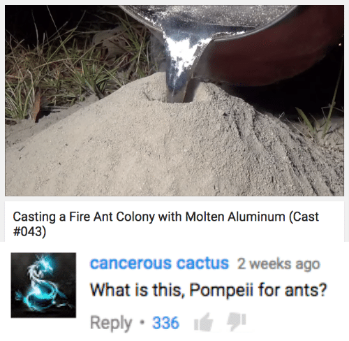 Colony: Casting a Fire Ant Colony with Molten Aluminum (Cast  #043)   cancerous cactuS 2 weeks ago  What is this, Pompeii for ants?  Reply 336