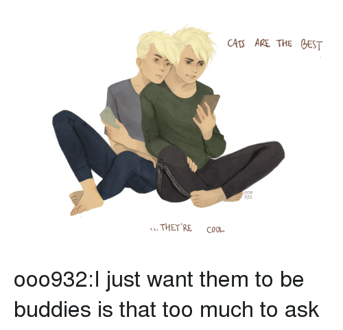 Target, Too Much, and Tumblr: CAT ARE THE EST  932  THEY RE CooL ooo932:I just want them to be buddies is that too much to ask