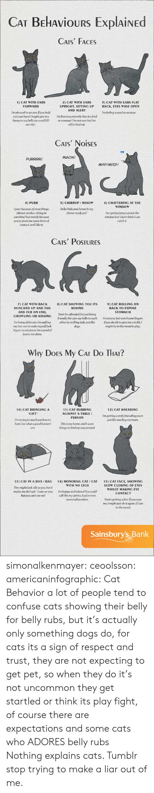 Being Alone, Cats, and Do It Again: CAT BEHAvioURS ExplAiNED  CATS FACES  2) CAT WITH EARS  UPRIGHT, SITTING UP  AND ALERT  1) CAT WITH EARS  3) CAT WITH EARS FLAT  BACK, EYES WIDE OPEN  FORWARD  Im pleased to see you.If you hold  outyour handImight give it a mlistening intently. Was it a bird  bump to say hello (or a sniffifIoramouse?Im not sure but Im  Im feeling scared or anxious  am shy)  offtofindout  CATS NOISES  MIAOW!  PURRRR!  MYIP!MYIP!  4) PURR  5) CHIRRUP /MIAOW  HellolWelcome home! Is my  dinnerready yet?  6) CHATTERING AT THE  WINDOW  I purr because of most things  (dinner strokes, sitting in  sunshine but mainly because  youúve given me some form of  I've spottedpreyoutside the  window but I dont think Ican  catch it  contact andI like it.   CATs PoSTURES  7) CAT WITH BACK  HUNCHED UP AND TAIL  AND FUR ON END,  8) CAT SHOWING YOU ITS  BEHIND  9) CAT ROLLING ON  BACK TO EXPOSE  STOMACH  GROWLING OR HISSINC Dont be offended Im just being  friendly We cats say hello toeach Itrust you but watchyour fingers  Im being defensive.lim puffing other by sniffing tails, just like ifyou decide to give me a tickle,I  dogs.  my hair out to make myselflook  bigger so whatever Im scaredof  leaves me alone.  might be in the mood to play.   Why DoEs My CAT Do THAr?  10) CAT BRINGING A  CIFT  12) CAT KNEADING  11) CAT RUBBING  AGAINST A TABLE /  PERSON  Imgetting comfy, kneading you is  just like needing mymum.  Im trying to teach you howto  hunt.See what a goodhunter  am.  This is my home andIscent  things to find mywayaround.  13) CAT IN A BoX / BAG 14) MONORAIL CAT CAT 15) CAT FACE, SHOWING  WITH NO LEGS  This might look silly to you, but it  makes me feel safe-Ican seeyou  but you cant seeme!  SLOW CLOSING OF EYES  WHILST MAKING EYE  CONTACT  Im happy and relaxed You could  call this mysphinx loaforeven  monorail position.  Youre getting akiss.Ifyou copy  me, Imightjust do it again.Iflam  in the mood  Sainsbury's Bank simonalkenmayer:  ceoolsson:  americaninfographic:  Cat Behavior   a lot of people tend to confuse cats showing their belly for belly rubs, but it's actually only something dogs do, for cats its a sign of respect and trust, they are not expecting to get pet, so when they do it's not uncommon they get startled or think its play fight, of course there are expectations and some cats who ADORES belly rubs  Nothing explains cats. Tumblr stop trying to make a liar out of me.