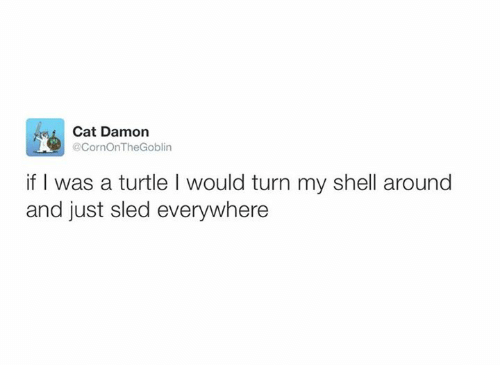 Dank, 🤖, and Shell: Cat Damon  @CornOnTheGoblin  if was a turtle l would turn my shell around  and just sled everywhere