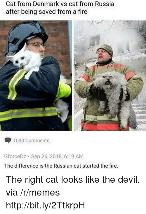 Fire, Memes, and Devil: Cat from Denmark vs cat from Russia  after being saved from a fire  1030 Comments  GforceDz Sep 26, 2018, 6:19 AM  The difference is the Russian cat started the fire. The right cat looks like the devil. via /r/memes http://bit.ly/2TtkrpH