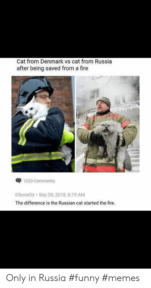 Fire, Funny, and Memes: Cat from Denmark vs cat from Russia  after being saved from a fire  1030 Comments  GforceDz Sep 26, 2018, 6:19 AM  The difference is the Russian cat started the fire. Only in Russia #funny #memes