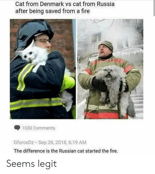 Fire, Denmark, and Russia: Cat from Denmark vs cat from Russia  after being saved from a fire  1030 Comments  GforceDz Sep 26, 2018, 6:19 AM  The difference is the Russian cat started the fire. Seems legit