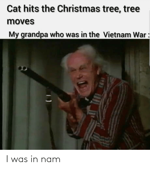 Christmas Tree: Cat hits the Christmas tree, tree  moves  My grandpa who was in the Vietnam War: I was in nam