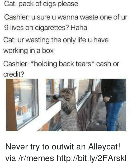 Life, Memes, and Http: Cat: pack of cigs please  Cashier: u sure u wanna waste one of ur  9 lives on cigarettes? Haha  Cat: ur wasting the only life u have  working in a box  Cashier: *holding back tears* cash or  credit? Never try to outwit an Alleycat! via /r/memes http://bit.ly/2FArskl