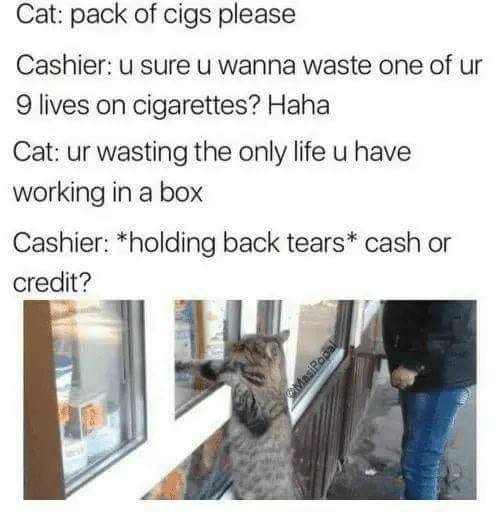 Life, Back, and Haha: Cat: pack of cigs please  Cashier: u sure u wanna waste one of ur  9 lives on cigarettes? Haha  Cat: ur wasting the only life u have  working in a box  Cashier: *holding back tears* cash  credit?  MasiRopal