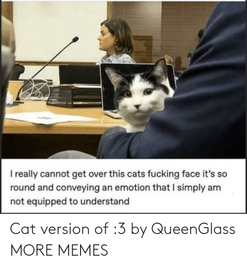 cat: Cat version of :3 by QueenGlass MORE MEMES