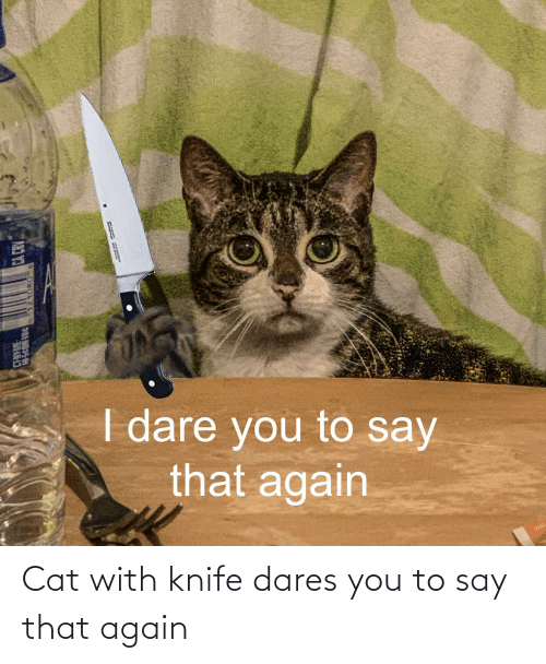 say that again: Cat with knife dares you to say that again