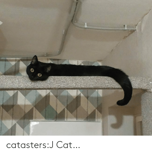 J: catasters:J Cat…