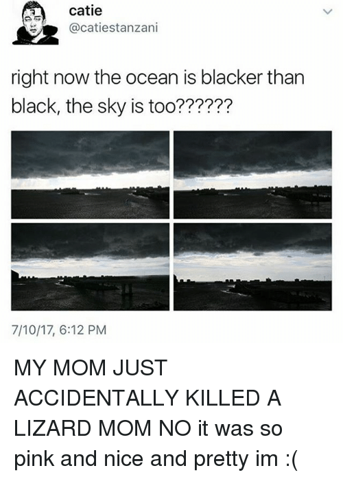 Memes, Black, and Ocean: catie  @catiestanzani  right now the ocean is blacker than  black, the sky is too??????  ?77???  7/10/17, 6:12 PM MY MOM JUST ACCIDENTALLY KILLED A LIZARD MOM NO it was so pink and nice and pretty im :(