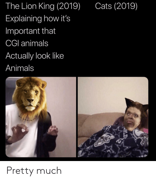 Animals, Cats, and The Lion King: Cats (2019)  The Lion King (2019)  Explaining how it's  Important that  CGI animals  Actually look like  Animals Pretty much