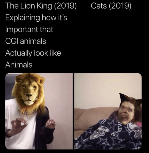 Animals, Cats, and The Lion King: Cats (2019)  The Lion King (2019)  Explaining how it's  Important that  CGI animals  Actually look like  Animals