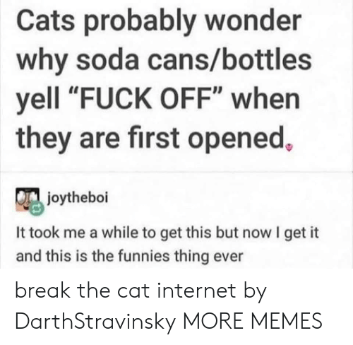 "Cats, Dank, and Internet: Cats probably wonder  why soda cans/bottles  yell ""FUCK OFF"" when  they are first opened,  joytheboi  It took me a while to get this but now I get it  and this is the funnies thing ever break the cat internet by DarthStravinsky MORE MEMES"