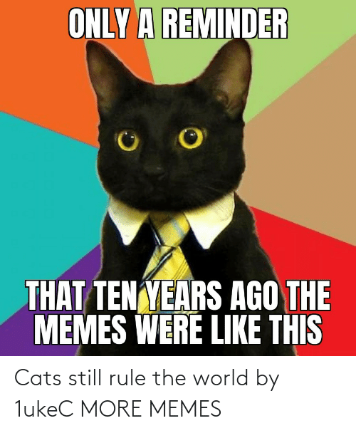 the world: Cats still rule the world by 1ukeC MORE MEMES