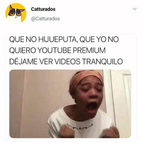 Videos, Yo, and youtube.com: Catturados  @Catturados  QUE NO HIJUEPUTA, QUE YO NO  QUIERO YOUTUBE PREMIUM  DÉJAME VER VIDEOS TRANQUILO