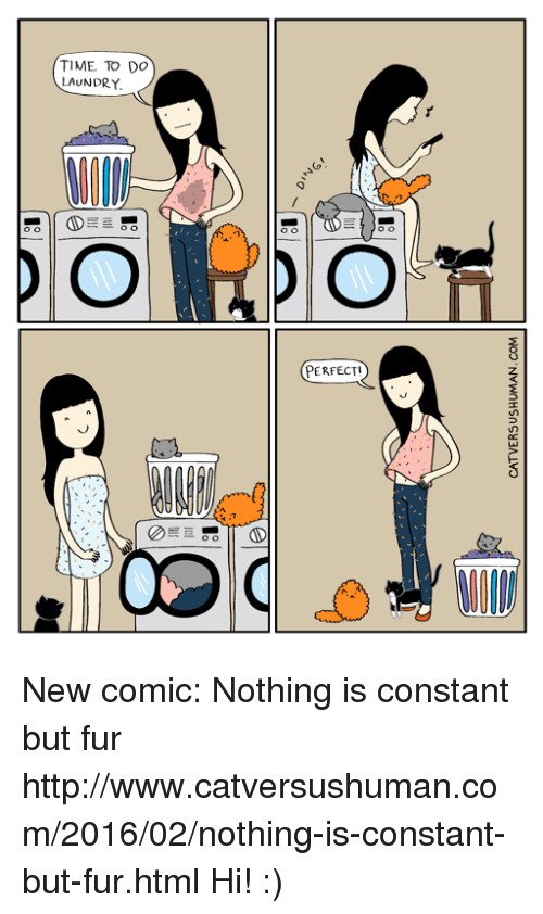Laundry, Memes, and Http: CATVERSUSHUMAN.COM  TIME TO DO  LAUNDRY  PORsior  00  PERFECT!)  (PERFECT! New comic: Nothing is constant but fur  http://www.catversushuman.com/2016/02/nothing-is-constant-but-fur.html  Hi! :)