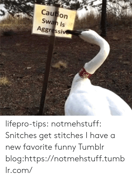 Funny, Stitches, and Tumblr: Caution  Is  Aggressi lifepro-tips: notmehstuff: Snitches get stitches  I have a new favorite funny Tumblr blog:https://notmehstuff.tumblr.com/
