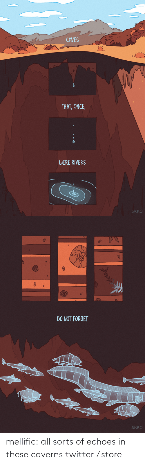 Tumblr, Twitter, and Blog: CAVES  THAT, ONCE,  WERE RIVERS  SKAO   DO NOT FORGET  SKAO mellific:  all sorts of echoes in these caverns twitter / store