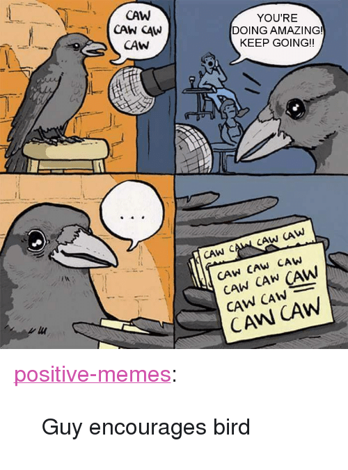 "Memes, Tumblr, and Blog: CAW  YOU'RE  DOING AMAZING!  KEEP GOING!  CAW  CAW CAML CAW CAW  CAW CAW CAW  CAW CAN CAW  CAW CAwW <p><a href=""https://positive-memes.tumblr.com/post/174365152915/guy-encourages-bird"" class=""tumblr_blog"">positive-memes</a>:</p>  <blockquote><p>Guy encourages bird</p></blockquote>"