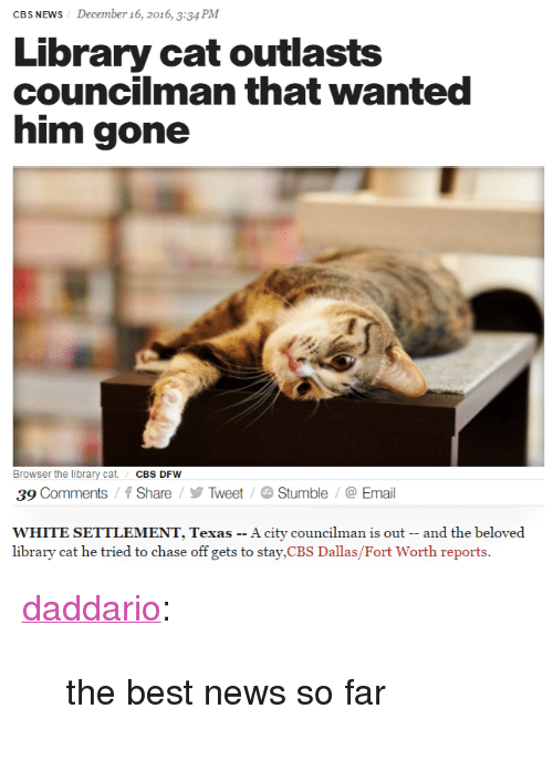 "News, Tumblr, and Cbs: CBS NEWS  December 16, 2016, 3:34 PM  Library cat outlasts  councilman that wanted  him gone  Browser the library cat/CBS DFW  39 Comments/Share/TweetStumble/@Email  WHITE SETTLEMENT, Texas -- A city councilman is out -- and the beloved  library cat he tried to chase off gets to stay,CBS Dallas/Fort Worth reports. <p><a href=""http://daddario.tumblr.com/post/154642750713"" class=""tumblr_blog"">daddario</a>:</p>  <blockquote><p>the best news so far </p></blockquote>"