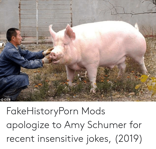 Amy Schumer, Jokes, and Amy: CEN FakeHistoryPorn Mods apologize to Amy Schumer for recent insensitive jokes, (2019)