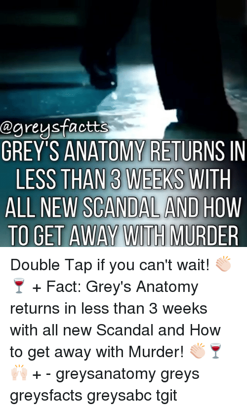 Memes, Grey's Anatomy, and Grey: Cgreysfactts  GREY'S ANATOMY RETURNS IN  LESS THAN 3 WEEKS WITH  ALL NEW SCANDAL AND HOW  TO GET AWAY WITH MURDER Double Tap if you can't wait! 👏🏻🍷 + Fact: Grey's Anatomy returns in less than 3 weeks with all new Scandal and How to get away with Murder! 👏🏻🍷🙌🏻 + - greysanatomy greys greysfacts greysabc tgit