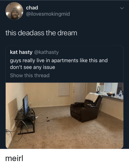 Live, Deadass, and MeIRL: chad  @ilovesmokingmid  this deadass the dream  kat hasty @kathasty  guys really live in apartments like this and  don't see any issue  Show this thread meirl