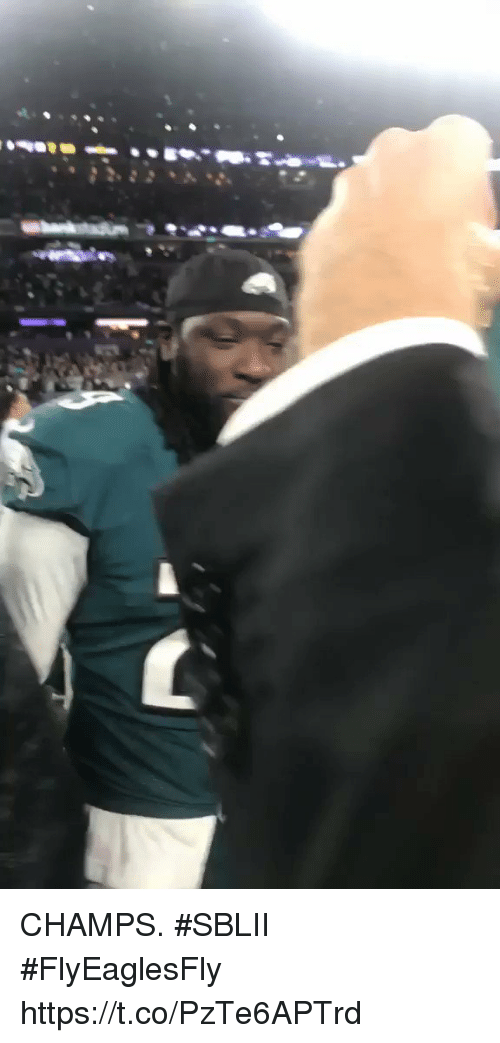 Memes, 🤖, and Champs: CHAMPS. #SBLII #FlyEaglesFly https://t.co/PzTe6APTrd