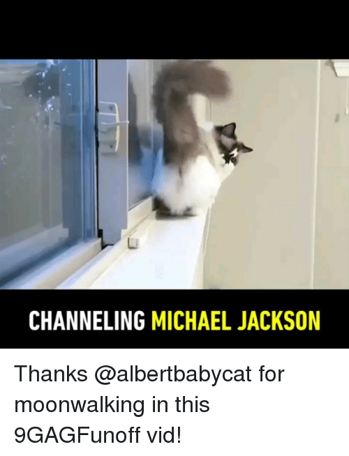 channeling: CHANNELING MICHAEL JACKSON Thanks @albertbabycat for moonwalking in this 9GAGFunoff vid!