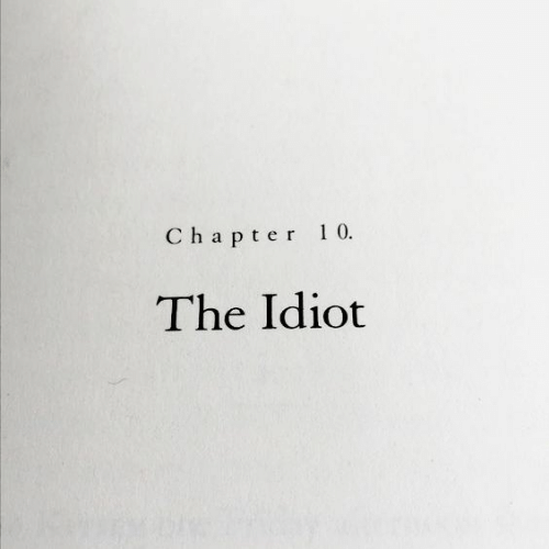 Chapter 10: Chapter 10  The Idiot