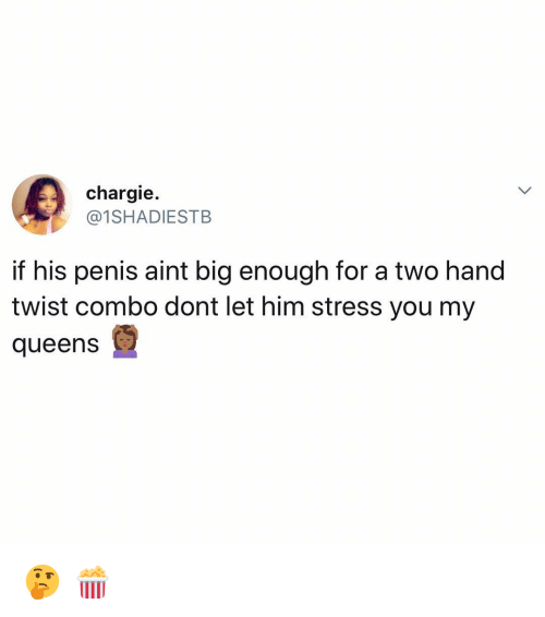 Memes, Penis, and 🤖: chargie.  @1SHADIESTB  if his penis aint big enough for a two hand  twist combo dont let him stress you my  queens 🤔 🍿