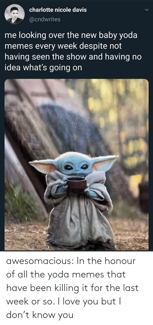 Killing: charlotte nicole davis  @cndwrites  me looking over the new baby yoda  memes every week despite not  having seen the show and having no  idea what's going on awesomacious:  In the honour of all the yoda memes that have been killing it for the last week or so. I love you but I don't know you
