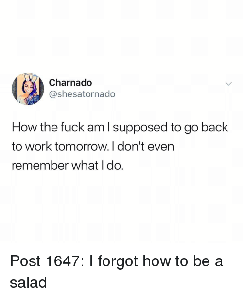 Memes, Work, and Fuck: Charnado  @shesatornado  How the fuck am l supposed to go back  to work tomorrow. I don't even  remember what I do. Post 1647: I forgot how to be a salad