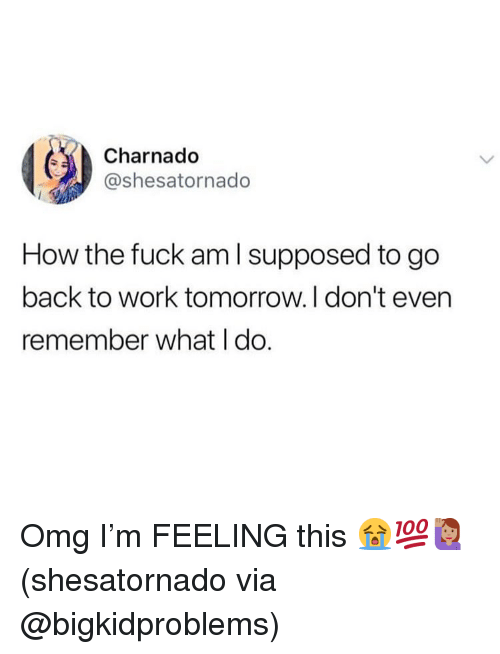 Memes, Omg, and Work: Charnado  @shesatornado  How the fuck am l supposed to go  back to work tomorrow.I don't even  remember what I do. Omg I'm FEELING this 😭💯🙋🏽♀️(shesatornado via @bigkidproblems)