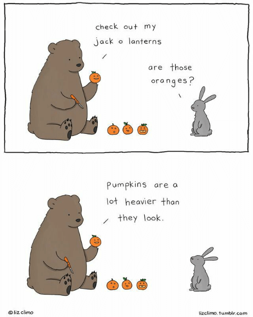 Lizclimo Tumblr: check out my  o lanterns  jack  are those  oranges?  Pumpkins are a  lot heavier than  they look  Oliz climo  lizclimo. tumblr.com