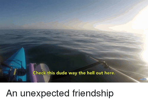 Dude, Friendship, and Hell: Check this dude way the hell out here. An unexpected friendship