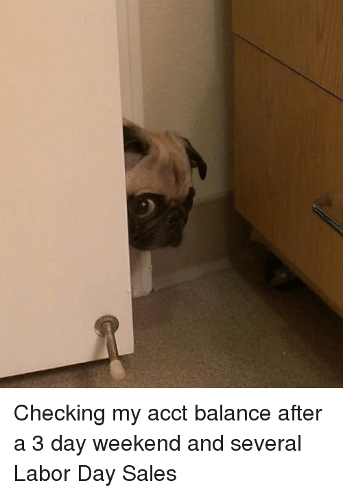 3 Day Weekend: Checking my acct balance after a 3 day weekend and several Labor Day Sales