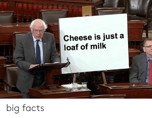 Facts, Cheese, and Milk: Cheese is just a  loaf of milk big facts