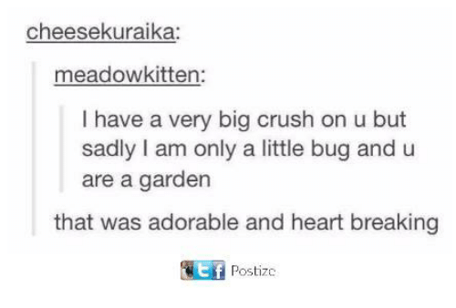 Crush, Dank, and Heart: cheesekuraika:  meadowkitten:  I have a very big crush on u but  sadly I am only a little bug and u  are a garden  that was adorable and heart breaking  Postizc