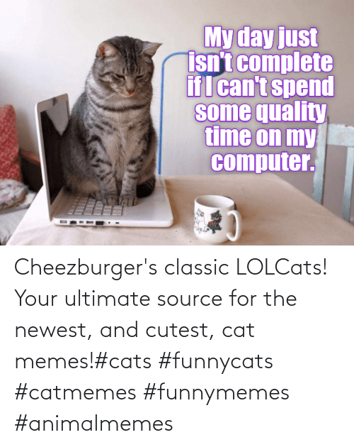newest: Cheezburger's classic LOLCats! Your ultimate source for the newest, and cutest, cat memes!#cats #funnycats #catmemes #funnymemes #animalmemes
