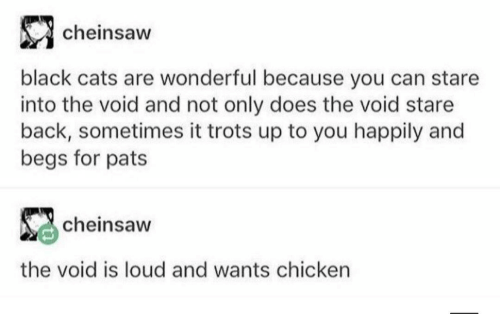Cats, Black, and Chicken: cheinsaw  black cats are wonderful because you can stare  into the void and not only does the void stare  back, sometimes it trots up to you happily and  begs for pats  cheinsaw  the void is loud and wants chicken