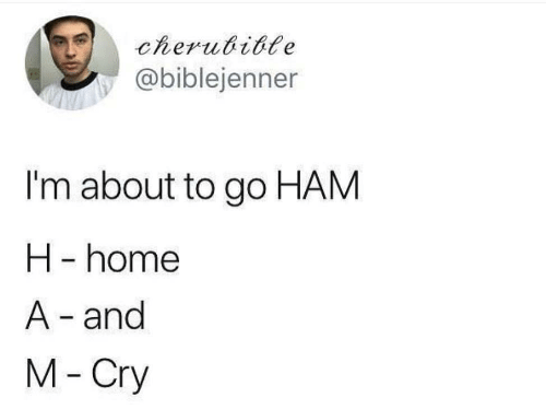 ham: cherubible  @biblejenner  I'm about to go HAM  H -home  A- and  M-Cry