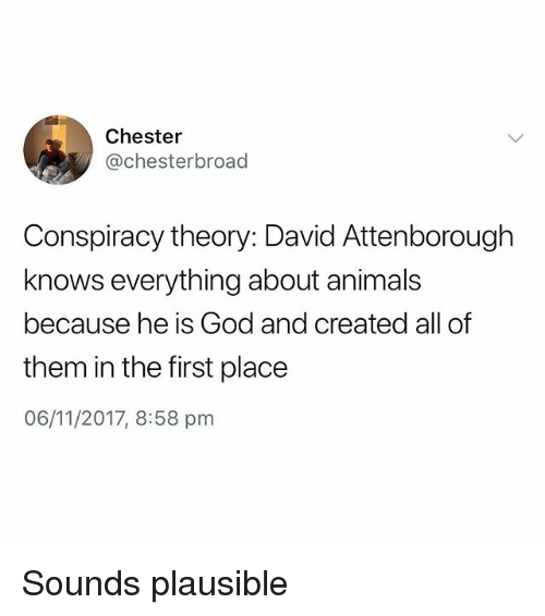 Animals, God, and British: Chester  @chesterbroad  Conspiracy theory: David Attenborough  knows everything about animals  because he is God and created all of  them in the first place  06/11/2017, 8:58 pnm Sounds plausible